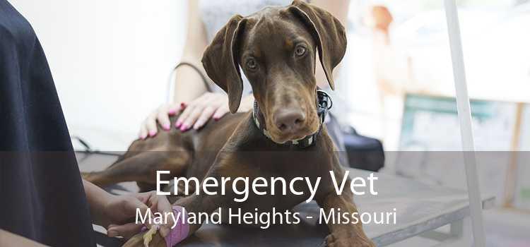 Emergency Vet Maryland Heights - Missouri