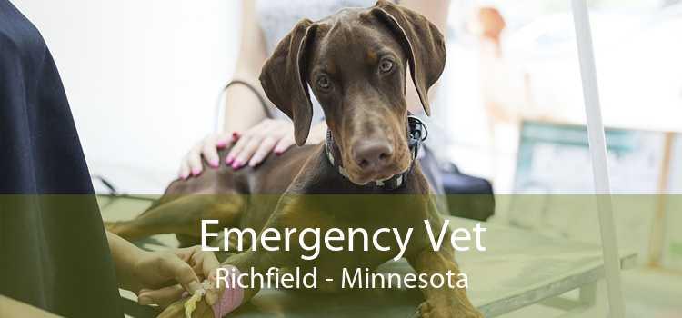 Emergency Vet Richfield - Minnesota