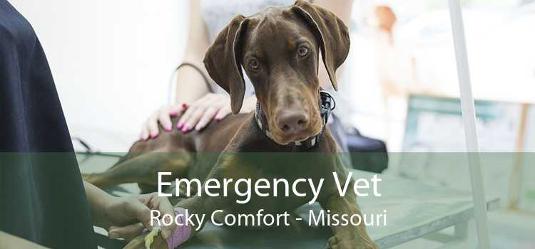 Emergency Vet Rocky Comfort - Missouri