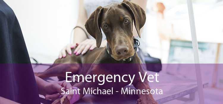 Emergency Vet Saint Michael - Minnesota
