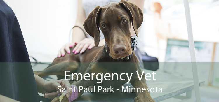 Emergency Vet Saint Paul Park - Minnesota