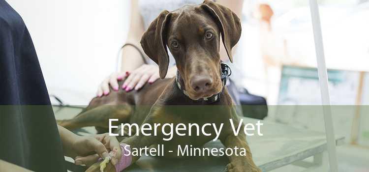 Emergency Vet Sartell - Minnesota