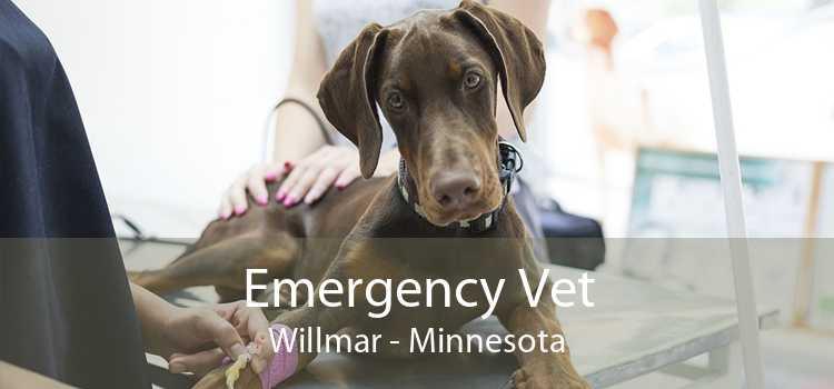 Emergency Vet Willmar - Minnesota