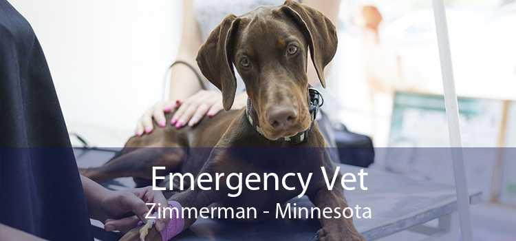 Emergency Vet Zimmerman - Minnesota