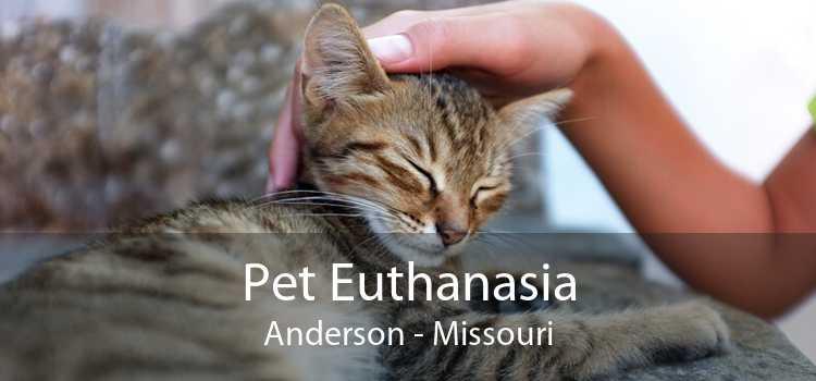 Pet Euthanasia Anderson - Missouri