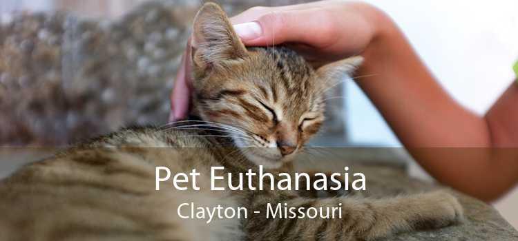 Pet Euthanasia Clayton - Missouri