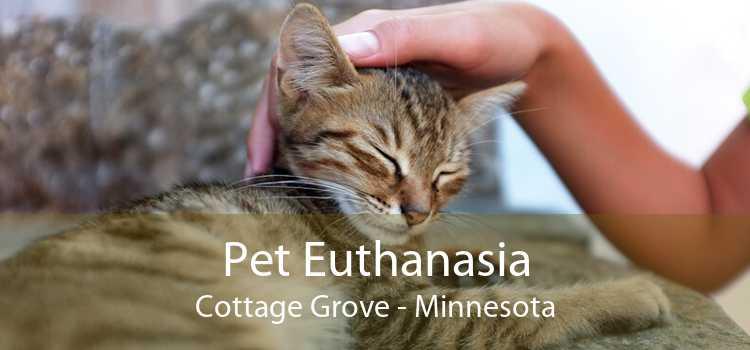 Pet Euthanasia Cottage Grove - Minnesota