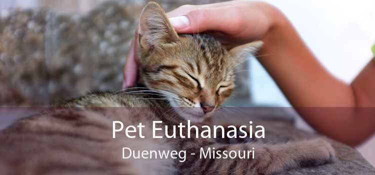Pet Euthanasia Duenweg - Missouri