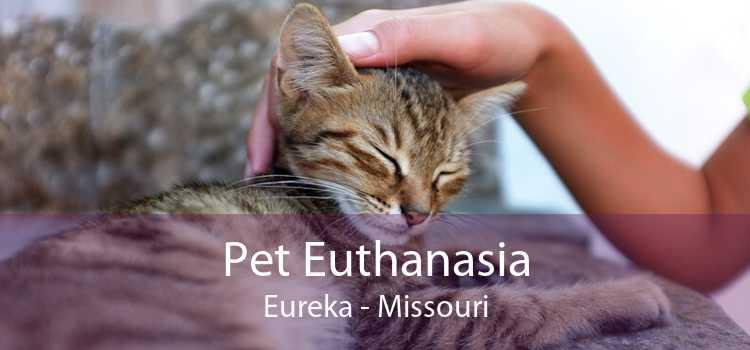 Pet Euthanasia Eureka - Missouri