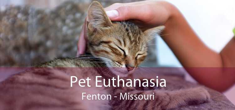 Pet Euthanasia Fenton - Missouri