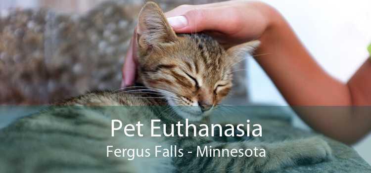 Pet Euthanasia Fergus Falls - Minnesota