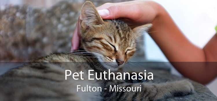 Pet Euthanasia Fulton - Missouri