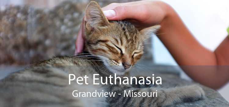 Pet Euthanasia Grandview - Missouri