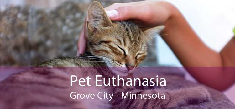 Pet Euthanasia Grove City - Minnesota