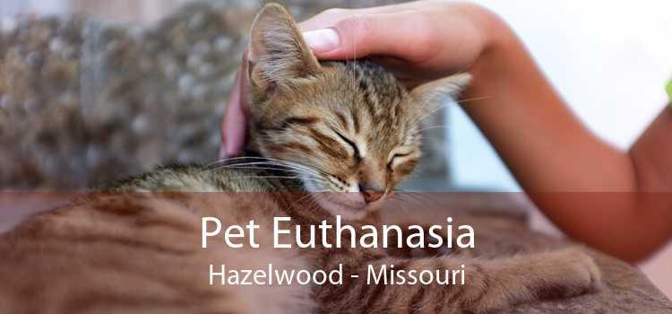 Pet Euthanasia Hazelwood - Missouri
