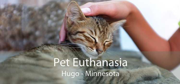 Pet Euthanasia Hugo - Minnesota