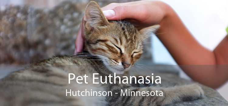 Pet Euthanasia Hutchinson - Minnesota