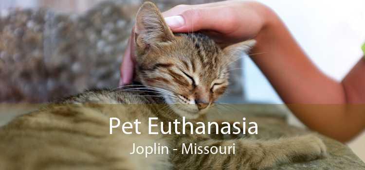Pet Euthanasia Joplin - Missouri