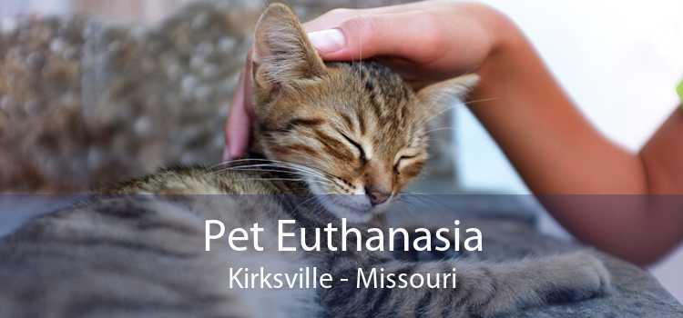 Pet Euthanasia Kirksville - Missouri