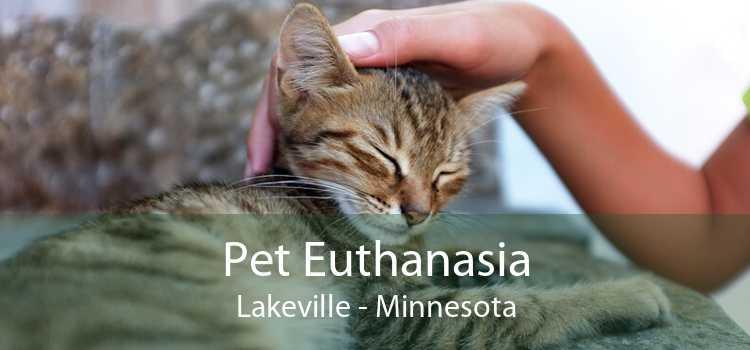 Pet Euthanasia Lakeville - Minnesota