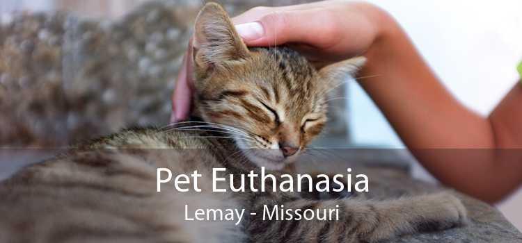 Pet Euthanasia Lemay - Missouri