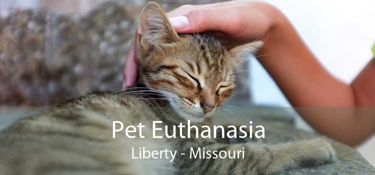 Pet Euthanasia Liberty - Missouri