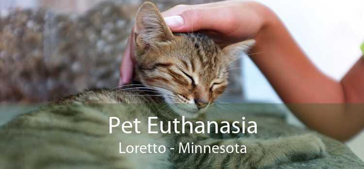 Pet Euthanasia Loretto - Minnesota