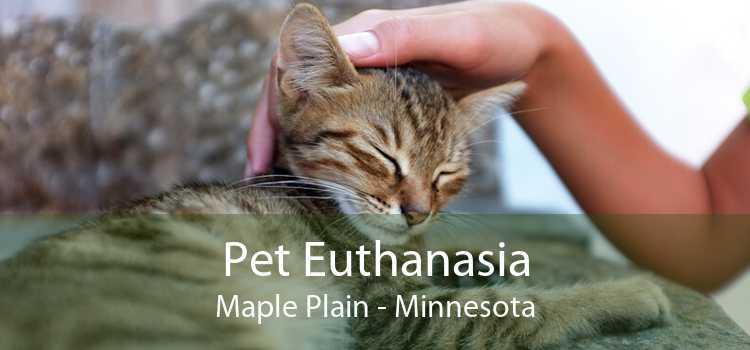 Pet Euthanasia Maple Plain - Minnesota