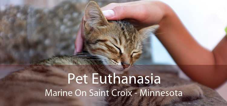 Pet Euthanasia Marine On Saint Croix - Minnesota