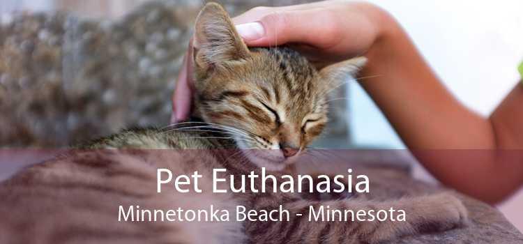 Pet Euthanasia Minnetonka Beach - Minnesota