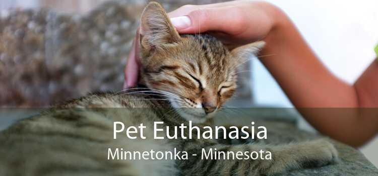 Pet Euthanasia Minnetonka - Minnesota