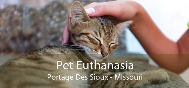 Pet Euthanasia Portage Des Sioux - Missouri