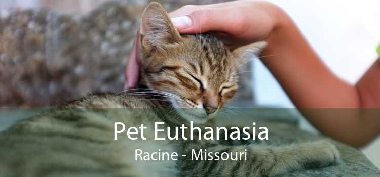 Pet Euthanasia Racine - Missouri