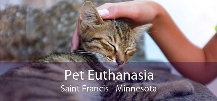 Pet Euthanasia Saint Francis - Minnesota