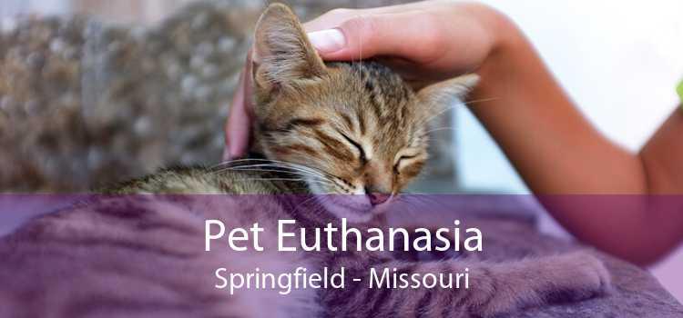 Pet Euthanasia Springfield - Missouri