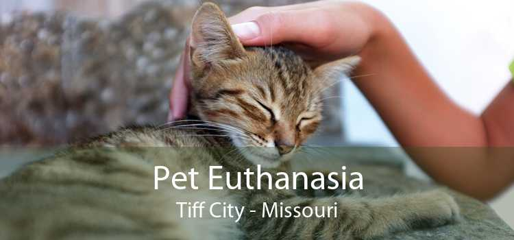 Pet Euthanasia Tiff City - Missouri
