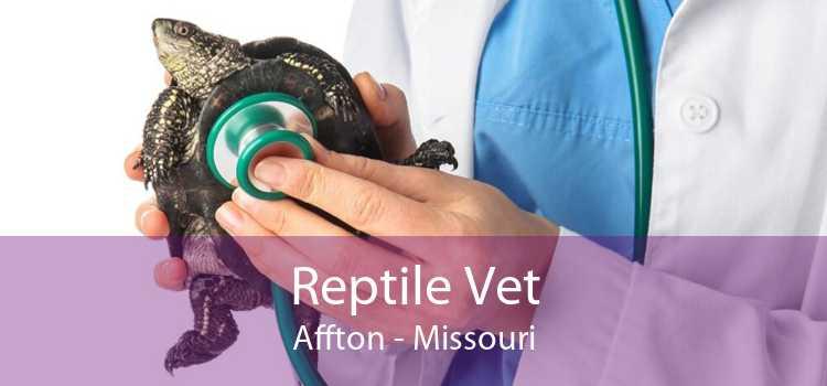 Reptile Vet Affton - Missouri