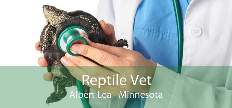 Reptile Vet Albert Lea - Minnesota