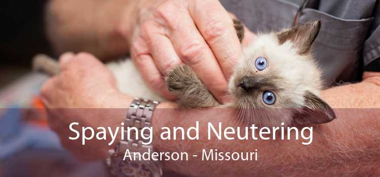 Spaying and Neutering Anderson - Missouri