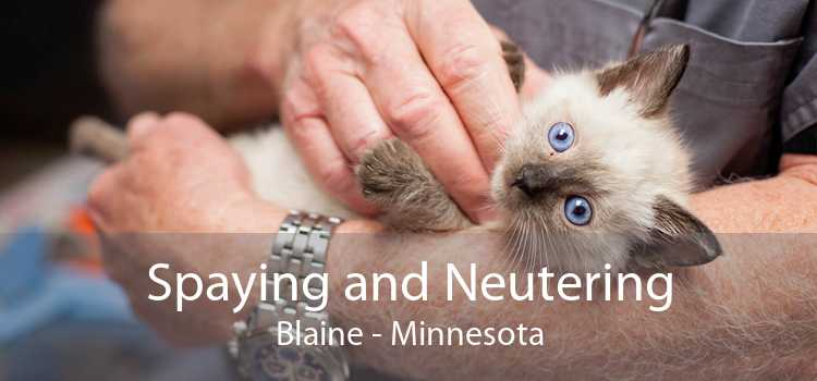 Spaying and Neutering Blaine - Minnesota