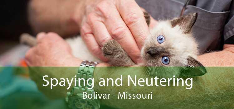 Spaying and Neutering Bolivar - Missouri