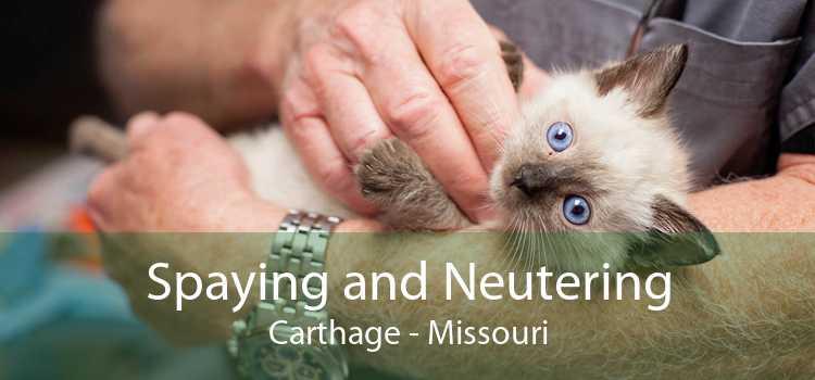 Spaying and Neutering Carthage - Missouri