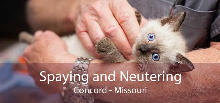 Spaying and Neutering Concord - Missouri