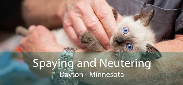 Spaying and Neutering Dayton - Minnesota