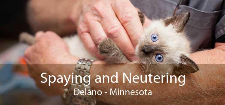 Spaying and Neutering Delano - Minnesota