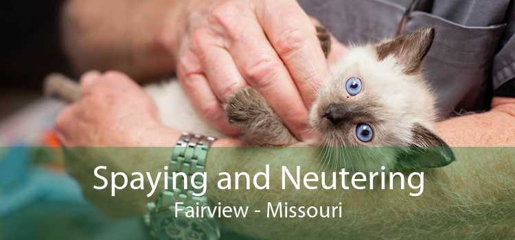Spaying and Neutering Fairview - Missouri