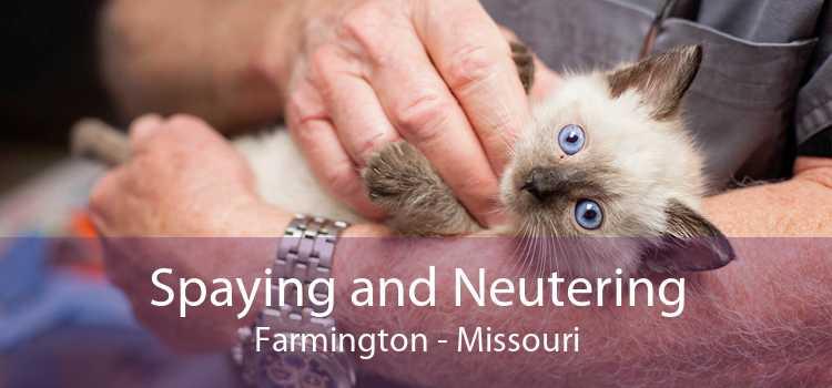 Spaying and Neutering Farmington - Missouri