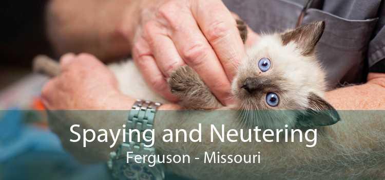 Spaying and Neutering Ferguson - Missouri