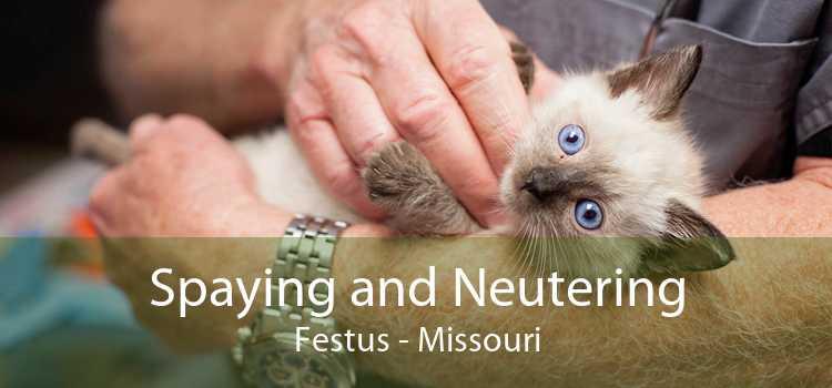 Spaying and Neutering Festus - Missouri