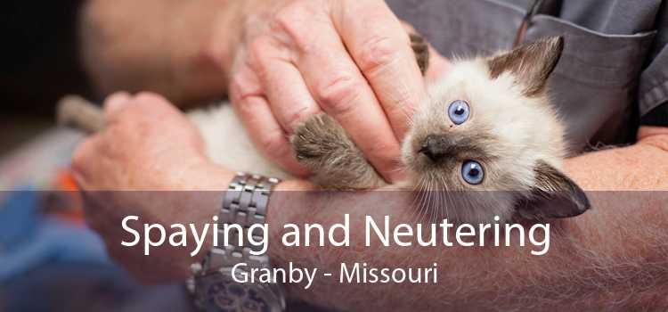 Spaying and Neutering Granby - Missouri